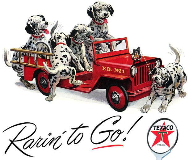 Go Dog Go....